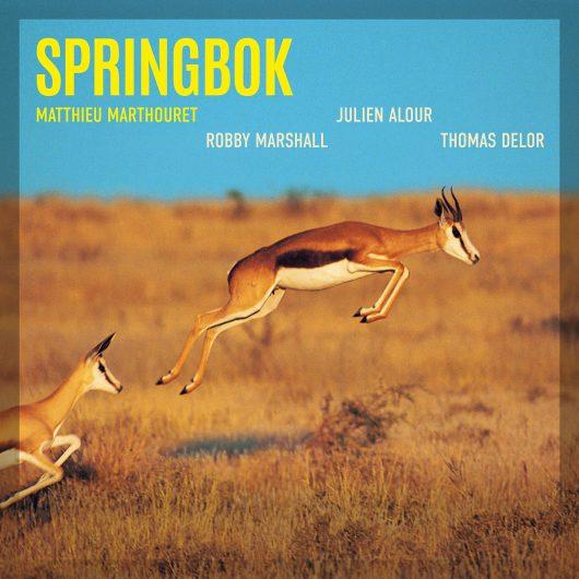 SPRINGBOK (EP)