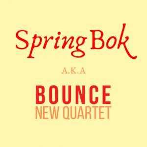 SpringBok Bounce