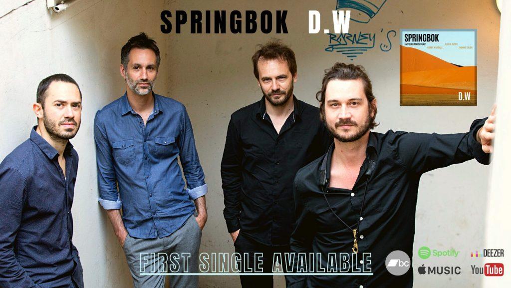 D.W - SPRINGBOK new single